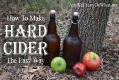 How To Make Hard Apple Cider The E - 300 Homebrewing Recipes to Brew at Home - RecipePin.com