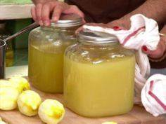 Limoncello - 300 Homebrewing Recipes to Brew at Home - RecipePin.com