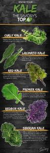 Know Your Kale: The Savory's Top 6 - 160 Kale Recipes - RecipePin.com
