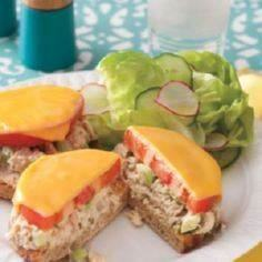 Canned Tuna Recipes - Easy Dinner  - 400 Tasty Tuna Recipes - RecipePin.com