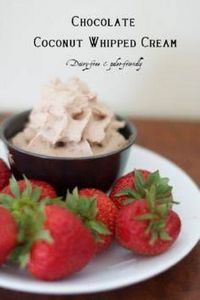Chocolate Coconut Milk Whipped Cre - 285 Appetizing Wheat Belly Recipes - RecipePin.com