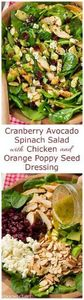 Cranberry Avocado Spinach Salad wi - 285 Appetizing Wheat Belly Recipes - RecipePin.com